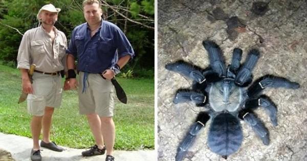 Εψαχνε 10 χρόνια… μια αράχνη, ξόδεψε 40.000 ευρώ και ξαφνικά εκείνη έπεσε στα πόδια του (φωτό)