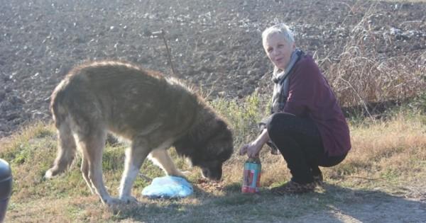 Ταξίδεψε 500 χλμ για να υιοθετήσει τον ηλικιωμένο Κρόνο που παράτησε ο κτηνοτρόφος «ιδιοκτήτης» του (Εικόνες)