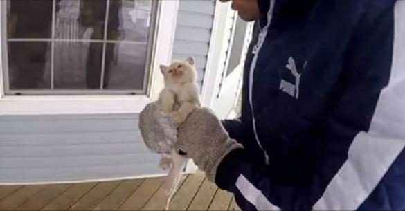 Αυτή η οικογένεια βρήκε ένα κατεψυγμένο γατάκι κάτω από το χιόνι και το «ανέστησε». (Βίντεο)