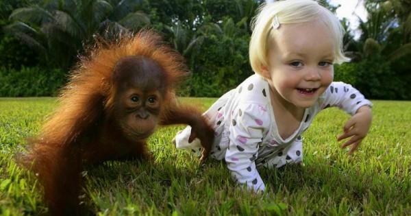 15 εικόνες που δείχνουν ξεκάθαρα ότι τα παιδιά και τα ζώα μπορούν να είναι οι καλύτεροι φίλοι.