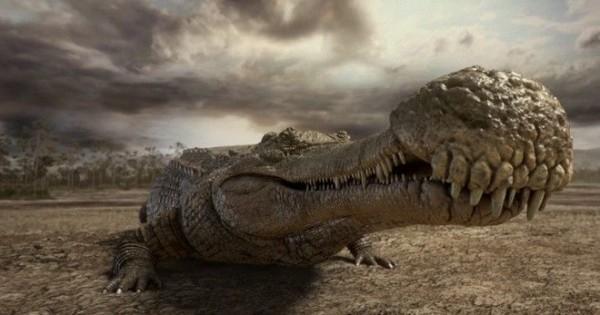 Τα 10 πιο τρομαχτικά προϊστορικά τέρατα. Δεν ήταν οι δεινόσαυροι! …  (Βίντεο-Εικόνες)