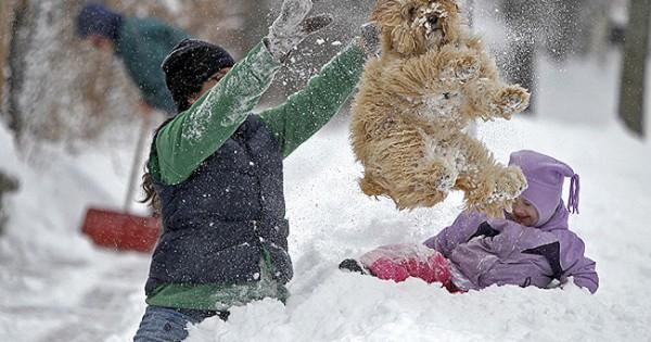 Αυτές οι φάτσες αγαπάνε πολύ το χιόνι και αυτό φαίνεται! (Φωτογραφίες)