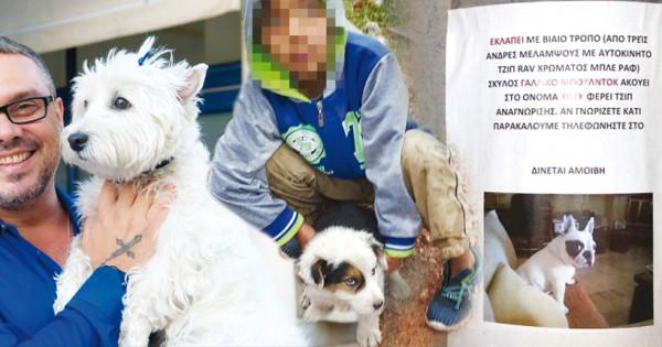 Χρυσές δουλειές με απαγωγές σκύλων κάνουν οι συμμορίες (Εικόνες)