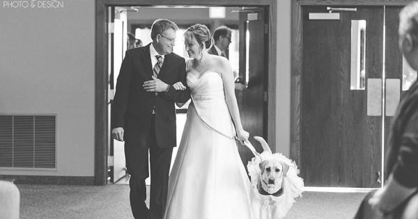 Είχε άγχος την ημέρα του γάμου της, όμως το σκυλί κατάφερε να… (Εικόνες)