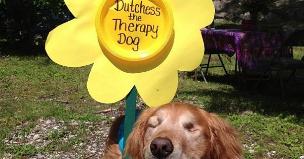 10 τυφλά σκυλάκια που θα κάνουν την ημέρα σας πιο χαρούμενη (Εικόνες)