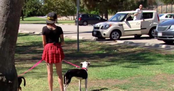 Βλέπει έναν άντρα να βγαίνει από το αυτοκίνητο του… Προσέξτε τώρα την αντίδραση των σκυλιών της…