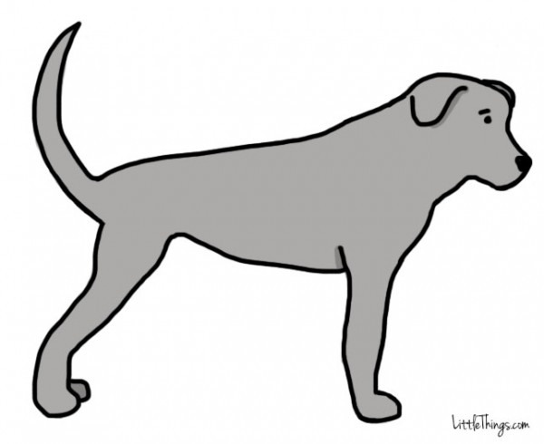 Σκύλος ούρα κούνημα ουράς