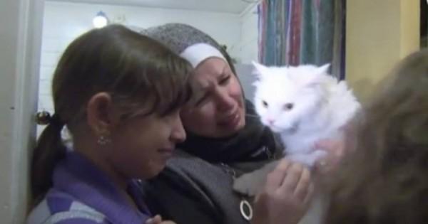 Βίντεο: Η ιστορία του γάτου – πρόσφυγα που ξαναβρήκε την οικογένειά του