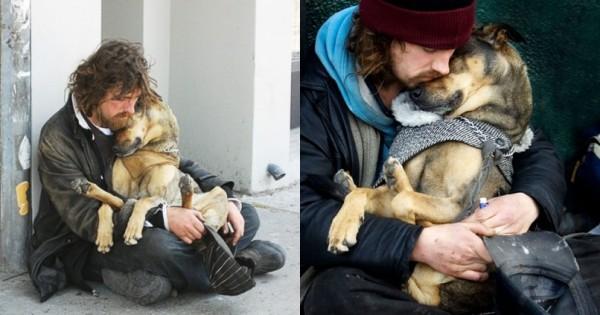 16 Σκύλοι που ΠΟΤΕ δεν Παράτησαν τους Ιδιοκτήτες τους παρά τις Δυσκολίες! (Εικόνες)