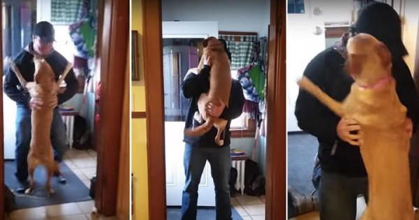 Δείτε την αντίδραση του όταν το αφεντικό του επέστρεψε από το ταξίδι! (Bίντεο)