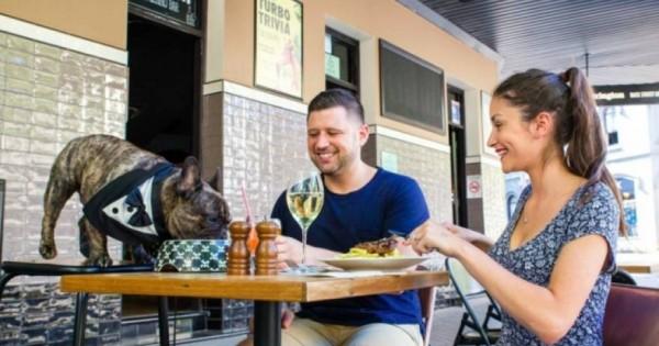 Εστιατόριο σας επιτρέπει να φάτε μαζί με τον… σκύλο σας! [φωτό]