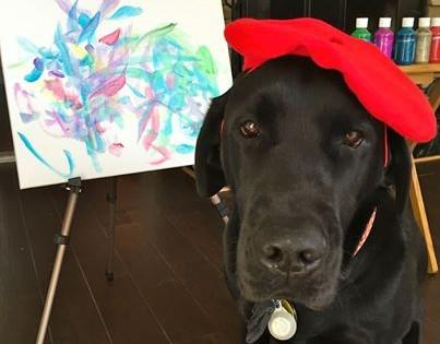 Γνωρίστε τον… DogVinci, το σκύλο-ζωγράφο! (Εικόνες)