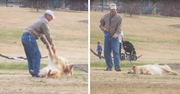 Η Ξεκαρδιστική Στιγμή που ένας Σκύλος το παίζει Πεθαμένος για να Μείνει περισσότερο στο Πάρκο! (Βίντεο)
