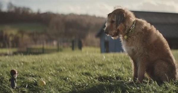 Αυτός ο σκύλος που περιμένει να βρει μια οικογένεια θα σας συγκινήσει… (Βίντεο)