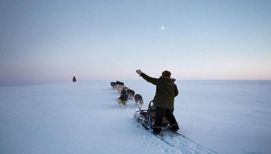 Ψαράδες Χάσκι Σκύλος Σαλαμίνα