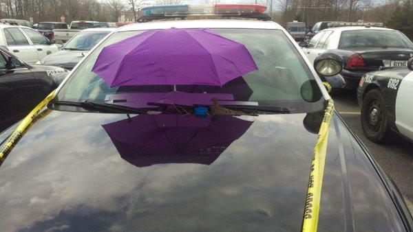 παρμπρίζ ομπρέλα αστυνομικοί