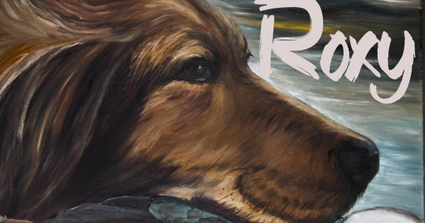 Roxy, μια ταινία μικρού μήκους για τ' αδέσποτα ζώα
