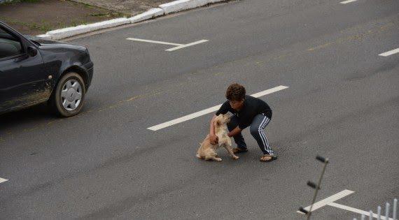 Εντεκάχρονος όρμησε σε αυτοκίνητα για να σώσει σκύλο (εικόνες)
