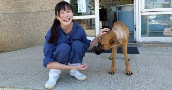 Κτηνίατρος έβαλε τέλος στη ζωή της κάνοντας ευθανασία στον εαυτό της γιατί αναγκαζόταν να κάνει ευθανασίες σε σκύλους!