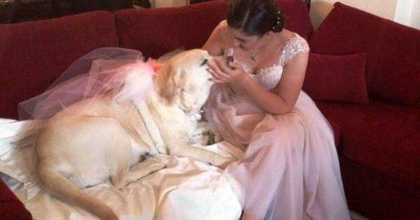 Παντρεύτηκαν και βάφτισαν το μωράκι τους έχοντας δίπλα τους τη σκυλίτσα που είχαν υιοθετήσει