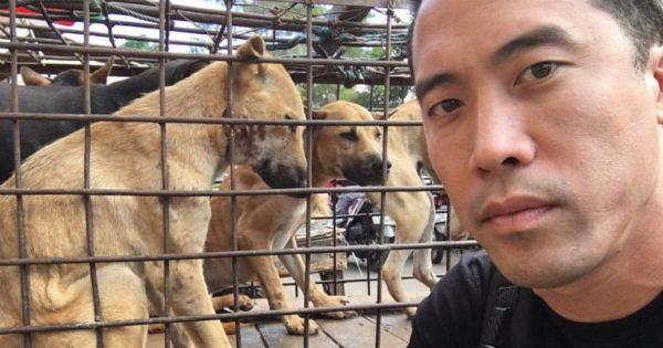 Κατάφερε να Σώσει 1.000 Σκυλάκια από το Κινέζικο Φεστιβάλ Yulin και τώρα…