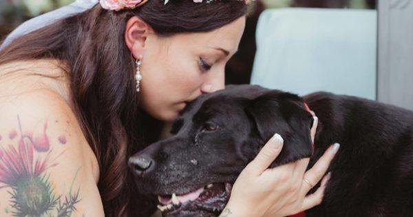 Θα δακρύσετε: Αυτός ο σκύλος έζησε ακριβώς όσο χρειαζόταν ώστε να δει την ιδιοκτήτριά του του να παντρεύεται…