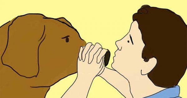 Βλέπετε τον σκύλο σας να υποφέρει; Δείτε πως θα του δώσετε τις πρώτες βοήθειες σε περίπτωση ανάγκης