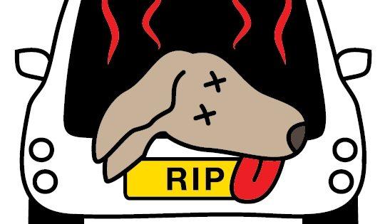 HOT DOG: Μην ψήνεις το σκύλο (ούτε τη γάτα) σου στο αυτοκίνητο!