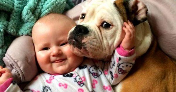 Τα σκυλιά κάνουν τα μωρά μας ευτυχισμένα! [video]