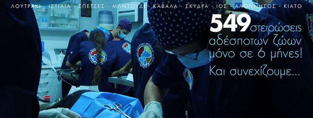 στείρωση κτηνίατροι εθελοντές αδέσποτα ζώα