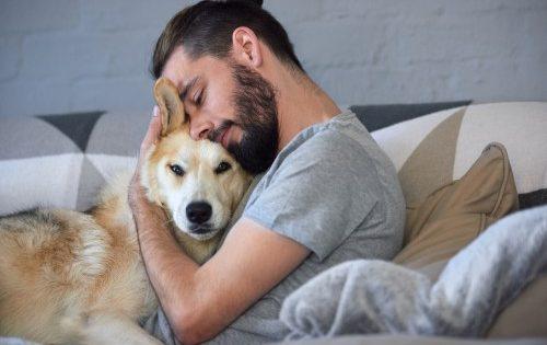 5 τρόποι να πείτε στον σκύλο σας «Σ'αγαπώ» στη γλώσσα του
