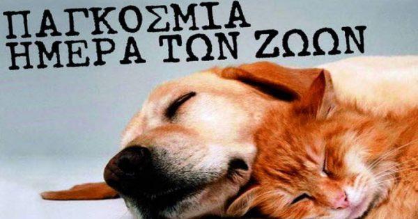 Παγκόσμια Ημέρα Ζώων, 4 Οκτωβρίου (βίντεο)