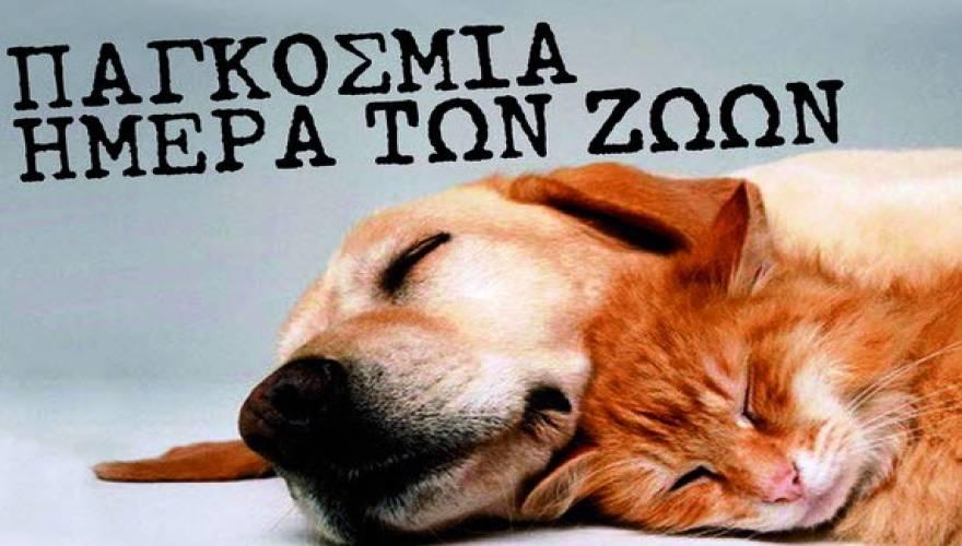 Παγκόσμια Ημέρα Ζώων ημέρα ζώων άγιος φραγκίσκος world animal day 4η Οκτωβρίου 1931