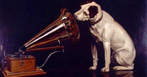 Αρέσει στον σκύλο μου να ακούει μουσική;