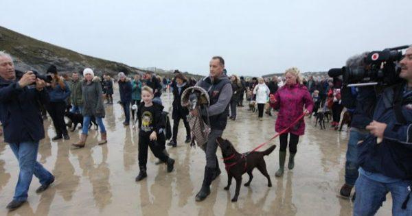 Συγκινητικός αποχαιρετισμός εκατοντάδων ανθρώπων σε παραλία για σκύλο που θα πέθαινε σε 2 ώρες!