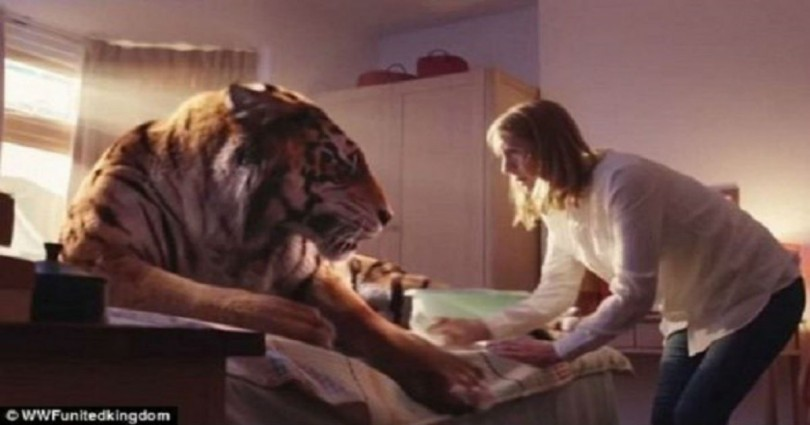 διαφήμιση WWF