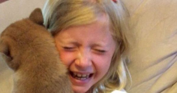 Η συγκινητική στιγμή που ένα 9χρονο κορίτσι παίρνει το σκυλί που πάντα ζητούσε