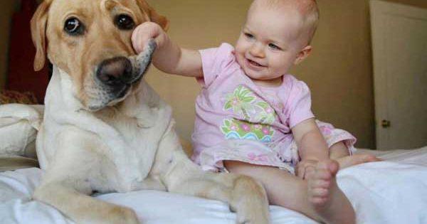 Παιδί και κατοικίδιο: 6 λόγοι γιατί είναι καλό να μεγαλώνει με ζωάκι