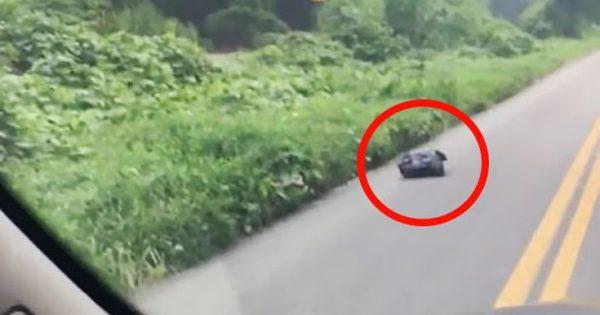 Βρήκε μια… κινούμενη σακούλα σκουπιδιών στο δρόμο και δεν πίστευε τι είχε μέσα