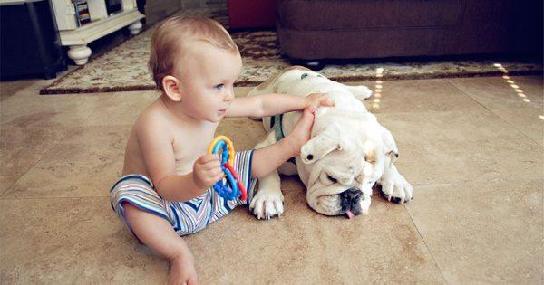 Η εγκάρδια φιλία ενός μικρού κοριτσιού και του μπουλντόγκ της
