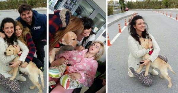 Στην Ασπασία, ο πρώτος σκύλος-βοηθός για άτομα με αναπηρία