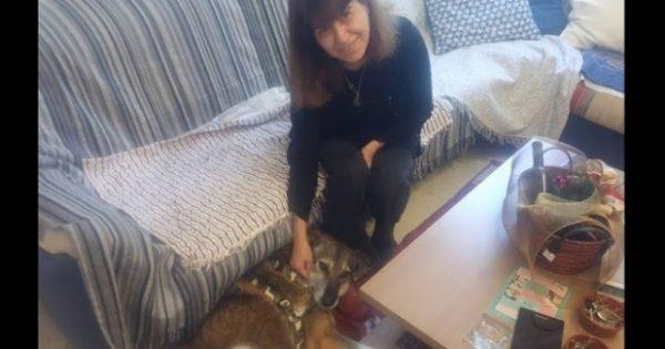 Άνοιξε το σπίτι και την καρδιά της στην 9χρονη σκυλίτσα που δεν ήθελε κανείς να υιοθετήσει