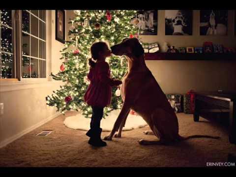 Χριστούγεννα Σκύλος