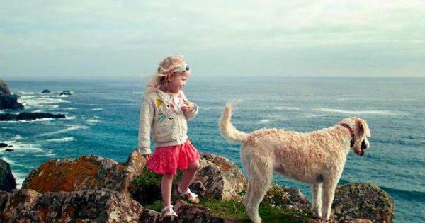 Οι επιστήμονες ξετυλίγουν το ταξίδι του σκύλου στους αιώνες