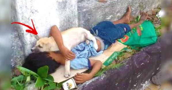 Η συγκινητική ιστορία ενός άστεγου και του σκύλου του αποδεικνύει πως υπάρχει πραγματική αγάπη!