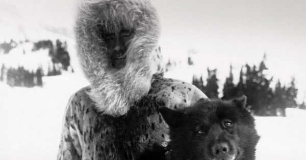 O ηρωικός σκύλος που έσωσε μια ολόκληρη πόλη από βέβαιο χαμό