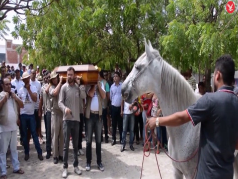 Βίντεο άλογο