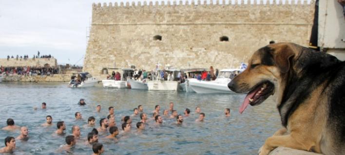 σταυρός Ηράκλειο αδέσποτο