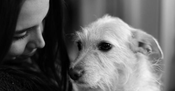 Ένας σκύλος σε μαθαίνει ν' αγαπάς…
