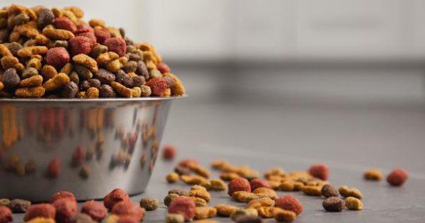 Συμβουλές για την σωστή αποθήκευση της ξηράς τροφής του σκύλου σας